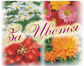Течен тор за цъфтящи цветя
